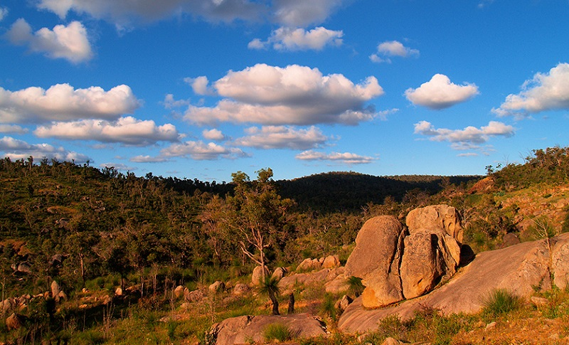 The Eagle View Walk Trail at John Forrest National Park ...