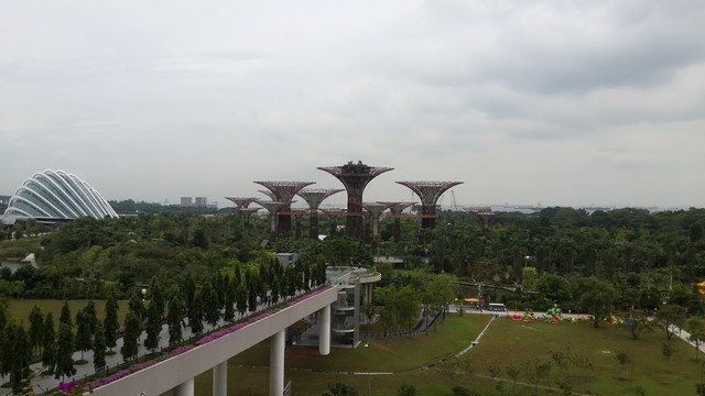 View of Gardens by the Bay from balcony